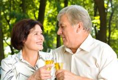 Célébration aînée de couples Images stock