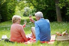 Célébration aînée romantique de couples Images stock