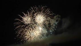 Célébration avec des feux d'artifice banque de vidéos