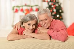 Célébration de couples Images stock