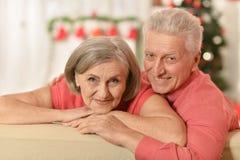 Célébration de couples Photo stock