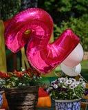 Célébration de deux ans d'anniversaire dans le jardin Image libre de droits
