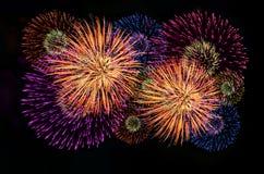 Célébration de feux d'artifice et le fond de minuit de ciel Photos stock