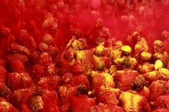 Célébration de Holi chez Barsana Images libres de droits