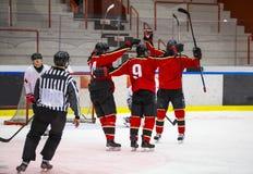 Célébration de joueurs de hockey de glace Photographie stock libre de droits