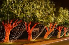 Célébration de Noël images libres de droits