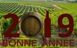 Célébration de nouvelle année avec du vin 2019 sur le fond de paysage images stock
