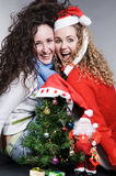 célébration des amis fous de Noël Photos stock