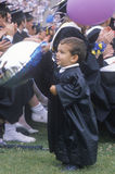 Célébration des diplômés d'UCLA Photos stock