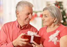 Célébration mûre de couples Photos libres de droits