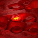 Célula del virus de la malaria - ejemplo 3D Imagenes de archivo