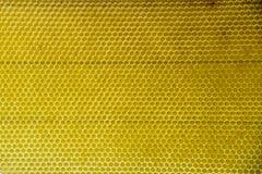 Célula natural de la textura del fondo del oro del peine de la miel Fotografía de archivo libre de regalías