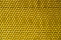 Célula natural 2 de la textura del fondo del oro del peine de la miel Imágenes de archivo libres de regalías