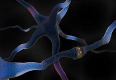Células de la sinapsis y de la neurona que envían el ejemplo de las señales eléctricas 3d Foto de archivo