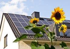 Células solares em um telhado com flores do sol Imagem de Stock