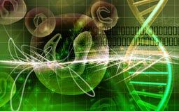Células y DNA Imagenes de archivo