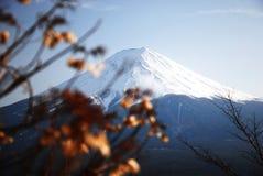 Céntrese en el punto de la montaña de Fuji en la estación del otoño de Japón Foto de archivo