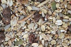 Céréale 02 Images libres de droits