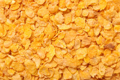 Céréale de maïs Photo libre de droits