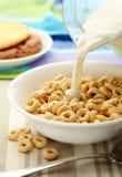 Céréale de matin Photos stock