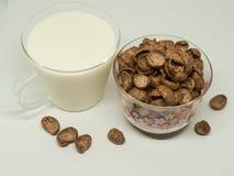 Céréale de petit déjeuner de chocolat Photos libres de droits