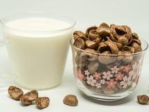 Céréale de petit déjeuner de chocolat image libre de droits