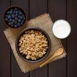 Céréale de petit déjeuner de farine d'avoine avec les myrtilles et le lait photo libre de droits