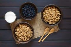 Céréale de petit déjeuner sèche de baie et de farine d'avoine photographie stock