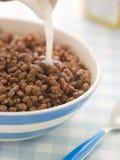 Céréale soufflée recouverte de chocolat de riz Photo stock