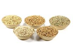 céréales images libres de droits