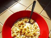 Céréales avec du lait image stock