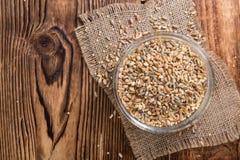 Céréales (blé, seigle, orge, avoine et millet) Images stock