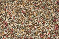 Céréales brutes photographie stock libre de droits