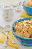 Céréales de maïs avec du lait dans le pot en céramique bleu Images libres de droits