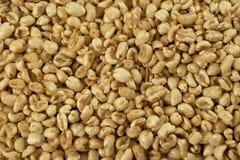 Céréales de riz image libre de droits
