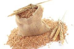 Céréales de sac Images libres de droits