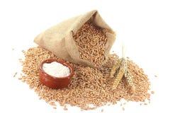 Céréales de sac Image stock