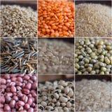 Céréales et composition en légumineuses image stock
