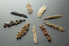 Céréales et graines organiques : aneth et melon et carottes et fenouil avec la rhubarbe, la laitue et les betteraves, épinards image stock