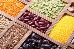 Céréales et haricots colorés image libre de droits