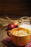 Céréales et lait Photos stock