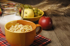 Céréales et lait Image libre de droits