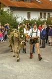 Cérémonial entraînant une réduction des bétail par la montagne image libre de droits