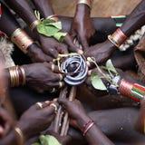 Cérémonie branchante de taureau africain de Hamer Image libre de droits
