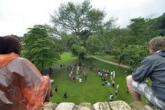 Cérémonie de Maya de Palenque Images libres de droits