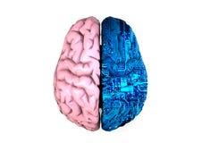 Cérebro artificial ilustração do vetor