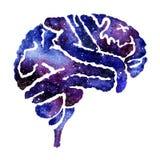 Cérebro azul com efeito da galáxia ilustração do vetor