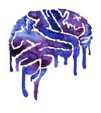 Cérebro azul e violeta com borrões da pintura ilustração stock