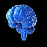 Cérebro azul lustroso Fotos de Stock Royalty Free