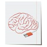 Cérebro com a pena da tomada de USB Fotos de Stock